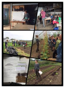 workshop moestuinieren
